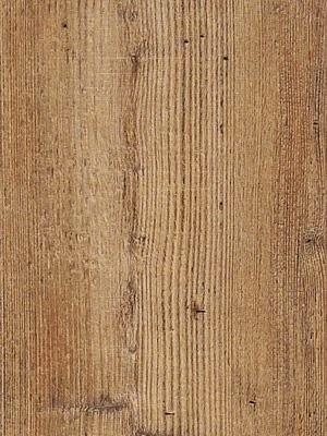 Cortex Vinatura Vinyl Parkett Designboden auf mit Klicksystem und integrierter Trittschalldämmung Corrido-Pinie Planke 1220 x 185 mm, 10,5 mm Stärke, 1,806 m² pro Paket, NS: 0,55 mm Preis günstig gesund Vinyl-Boden-Parkett von Bodenbelag-Hersteller Cortex HstNr: CVI01505 *** Mindestbestellmenge 15 m² ***