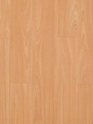 Adramaq Cornwall Vinyl Designboden Buche 1-Stab zum Verkleben wA41142-055