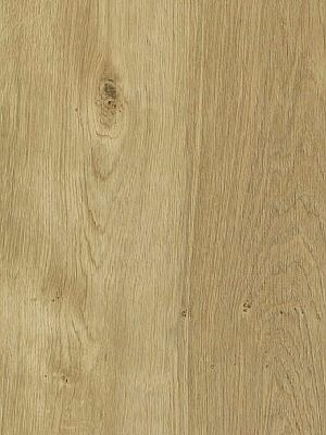 Amtico Access Vinyl Designboden Sun Bleached Oak Wood selbstliegend, Kanten gefast