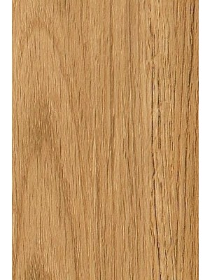 Amtico Cirro Designboden Rigid-Core PVC-frei Dorest Oak 1219,2 x 184 mm