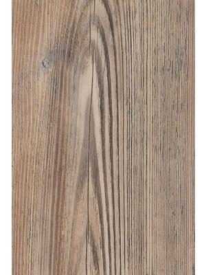 Amtico Cirro Designboden Rigid-Core PVC-frei Parisian Pine 1219,2 x 184 mm