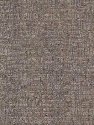 Amtico Signature Vinyl Designboden Cirrus Dawn Wood Standard wAROW8070