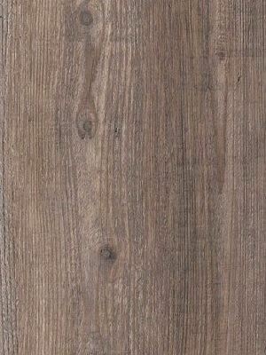 Amtico Signature Vinyl Designboden Harbour Pine Wood Standard wAROW7990