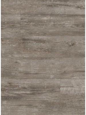 Amtico Spacia Vinyl Designboden Coastal Pine Wood zur Verklebung, Kanten gefast