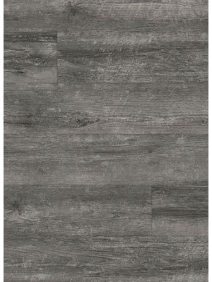 Amtico Spacia Vinyl Designboden Drift Pine Wood zur Verklebung, Kanten gefast