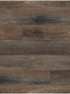 Amtico Spacia Vinyl Designboden Haven Oak Wood zur Verklebung, Kanten gefast