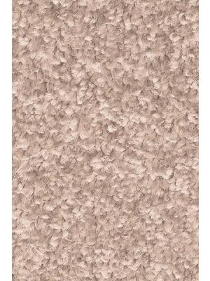 AW Carpet Gaia Equator Teppichboden 35 Luxus Frisé aus Polyester