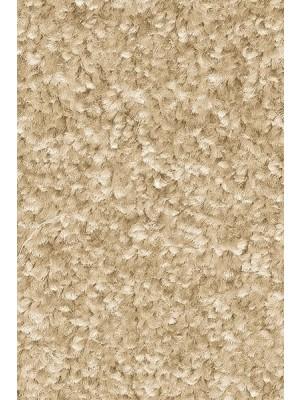 AW Carpet Gaia Equator Teppichboden 39 Luxus Frisé aus Polyester