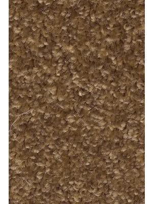 AW Carpet Gaia Equator Teppichboden 42 Luxus Frisé aus Polyester