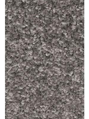 AW Carpet Gaia Equator Teppichboden 98 Luxus Frisé aus Polyester
