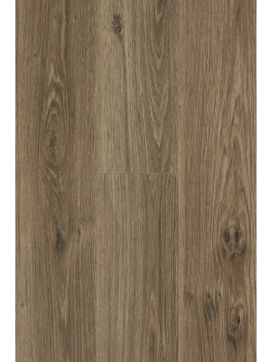 BerryAlloc Pure Click 55 Designboden Authentic Oak Brown Wood