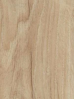Forbo Allura 0.40 light honey oak Domestic Designboden Wood zum Verkleben wfa-w66305-040
