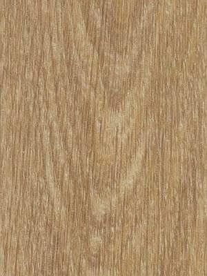 Forbo Allura 0.40 natural giant oak Domestic Designboden Wood zum Verkleben wfa-w66284-040