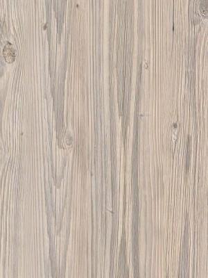 Forbo Impressa natürlicher Designboden bleached pine Blauer Engel zertifiziert