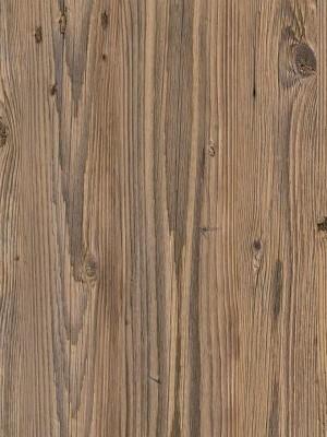 Forbo Impressa natürlicher Designbelag natural pine Blauer Engel zertifiziert