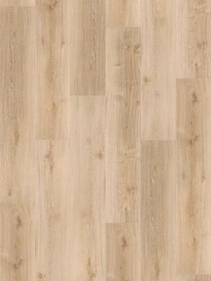 Parador Basic 2.0 Wood Vinyl Eiche Royal hell gekälkt gebürstete Struktur