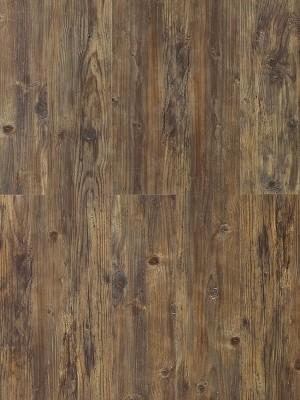 Wicanders Hydrocork Klick-Vinyl Century Fawn Pine Designboden mit Kork-Mittelschicht