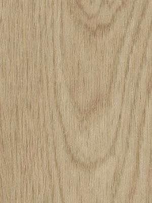 Forbo Allura Click 0.55 whitewash elegant oak Designboden mit Klicksystem
