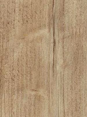 Forbo Allura Click 0.55 natural rustic pine Designboden mit Klicksystem