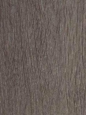 Forbo Allura Click 0.55 grey collage oak Designboden mit Klicksystem