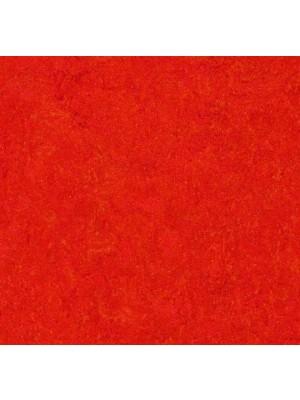 Forbo Marmoleum Click Linoleum-Parkett scarlet einfach selbst zu verlegen