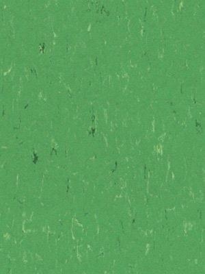 Forbo Linoleum Uni nettle green Marmoleum Piano