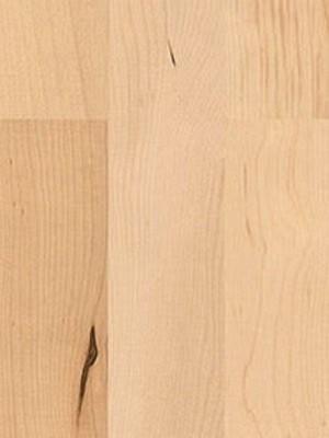 wH524406 Haro Serie 4000 Holzparkett Canadischer Ahorn Tundra Schiffsboden 3-Stab Fertigparkett, permaDur Versiegelung
