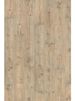 Wineo 1000 Purline Bioboden Click Ascona Pine Nature Wood Planken mit Klicksystem wPLC052R