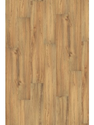 Wineo 1000 Purline Bioboden Click Canyon Oak Wood Planken mit Klicksystem