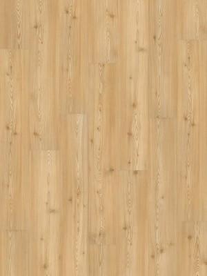 Wineo 1000 Purline PUR Bioboden Carmel Pine Wood Planken zum Verkleben wPL048R