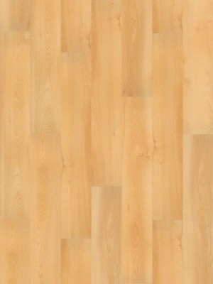 Wineo 1000 Purline PUR Bioboden Summer Beech Wood Planken zum Verkleben