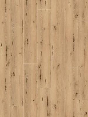 Wineo 1200 wood XXL Click Multi-Layer Announcing Fritz Bioboden-Designparkett auf HDF-Träger mit Klicksystem