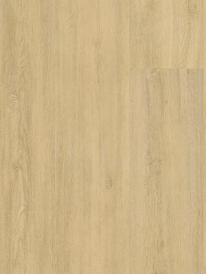 Wineo 400 Wood XL Designboden Vinyl Kindness Oak Pure