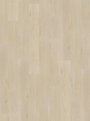 Wineo 500 medium V4 Laminat wild oak white Laminatboden einzigartige Echtholzanmutung dank 4V-Fuge Eiche Landhausdiele