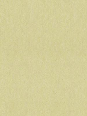 wmf3881-2,5 Forbo Marmoleum Linoleum green wellnes Fresco Naturboden
