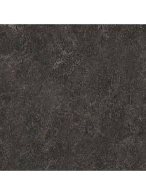 wmr3236-2,5 Forbo Marmoleum Linoleum dark bistre Real Naturboden