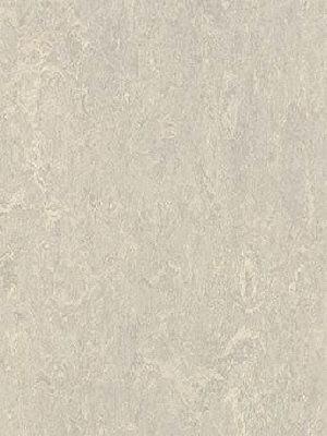 Forbo Marmoleum Modular Linoleum Concrete Marble