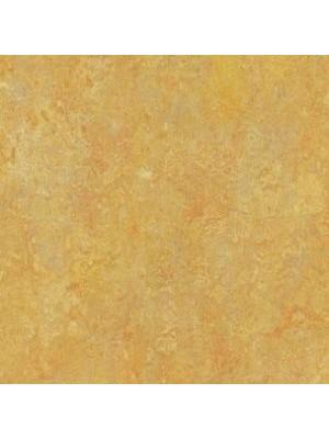 wmv3411-2,5 Forbo Marmoleum Linoleum sunny day Vivace Naturboden