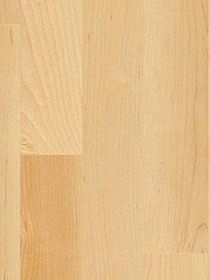 wP1595132 Parador Basic 11-5 Holzparkett Ahorn kanadisch natur Fertig-Parkett in Schiffsboden 3-Stab, matt lackiert