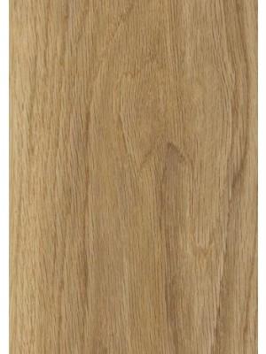 wSB5W2504 Amtico Click Smart Honey Oak Vinylboden Direkt-Klicksystem