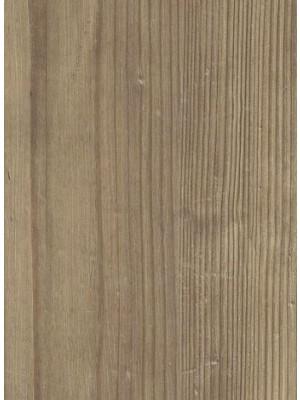 Amtico Click Smart Designboden Dry Cedar mit integrierter Dämmung