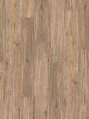 HARO DISANO Saphir Rigid-Klick-Boden LA 4VM Steineiche creme strukturiert SPC Rigid Designboden