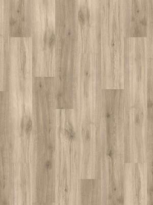 HARO DISANO Saphir Rigid-Klick-Boden LA 4VM Eiche Provence creme auth. SPC Rigid Designboden