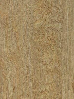 Amtico Access Vinyl Designboden Bleached Elm Wood selbstliegend, Kanten gefast