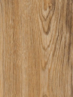 Amtico First Vinyl Designboden Featured Oak Wood Designboden, Kanten gefast wSF3W2533a