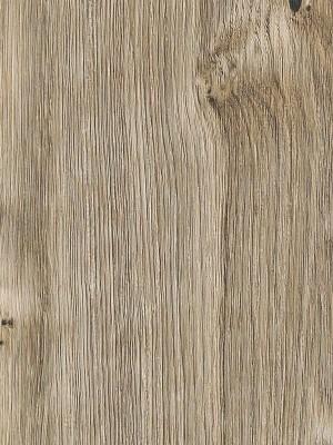 Amtico First Vinyl Designboden Sun Bleached Oak Wood Designboden, Kanten gefast wSF3W2531a