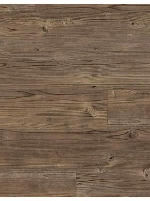 Amtico Spacia Vinyl Designboden Smoked Cedar Wood zum Verkleben, Kanten gefast wSS5W2536a