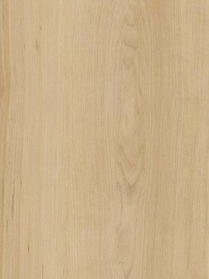 Amtico Spacia Vinyl Designboden Warm Maple Wood zur Verklebung, Kanten gefast