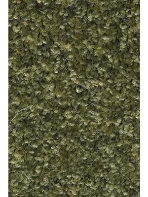 AW Carpet Gaia Equator Teppichboden 24 Luxus Frisé aus Polyester