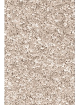 AW Carpet Gaia Equator Teppichboden 33 Luxus Frisé aus Polyester